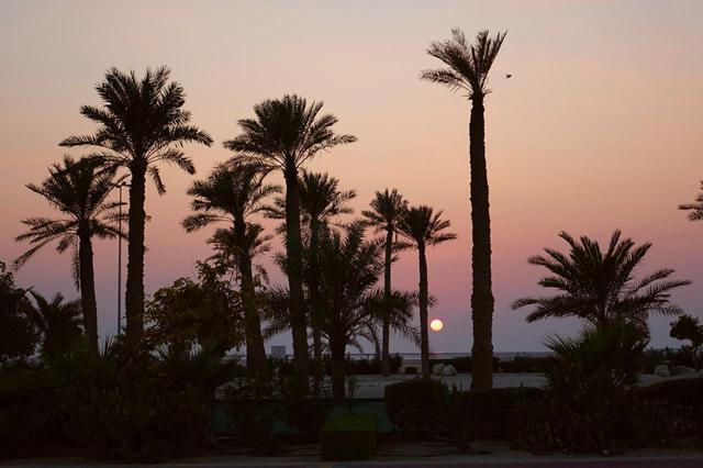 Qué ver, visitar y hacer en Baréin (Bahrein)